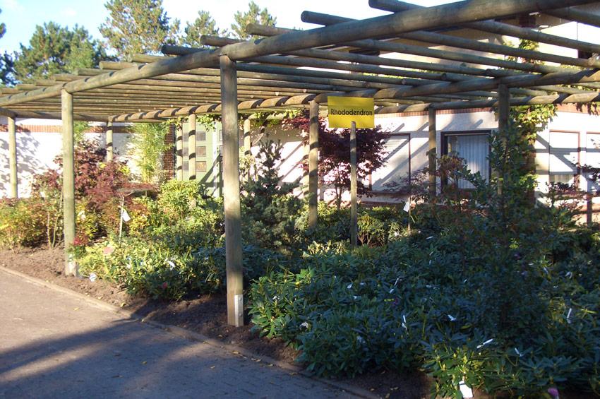 baumschule-klabautschke-muensterland-1