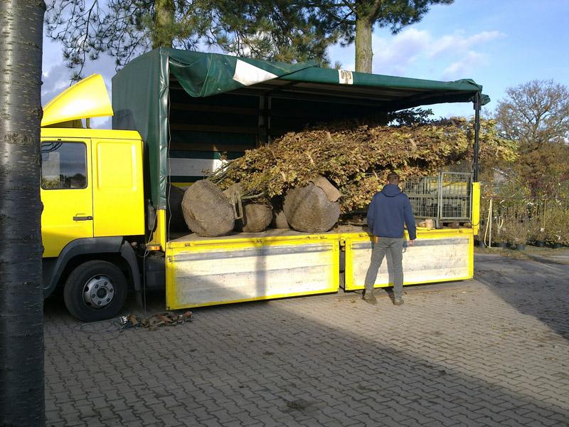 pflanzenpost-transport-2